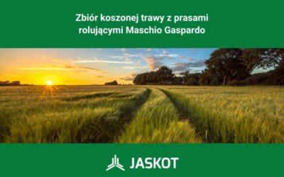 Zbiór koszonej trawy zprasami rolującymi Maschio Gaspardo